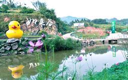 巴南如来谷刺激漂流、西瓜生态采摘一日游