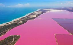 西澳大利亚珀斯-粉红湖-卡尔巴里国家公园-洛特尼斯岛纯玩深度半自由9日游<妻子的浪漫旅行>