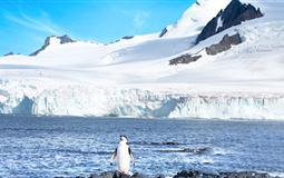 [海钻石号]南极<极地半岛+南设得兰群岛>+巴西+阿根廷深度21日游<上海起止>