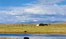 纳木错湖畔那是藏民们的家园