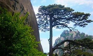 黄山玉屏景区3