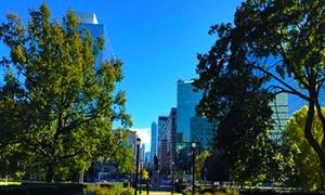 加拿大多伦多大学4
