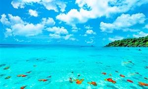 斯米兰岛3