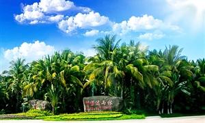 呀诺达热带雨林1
