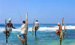 高跷钓鱼1