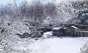 仙女山国家级森林公园1