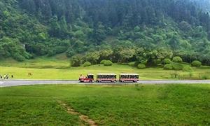 仙女山国家级森林公园4