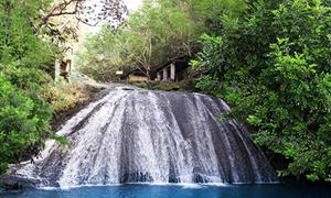 古东原始森林瀑布群1