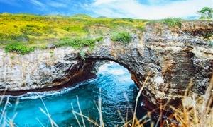 贝妮达岛1