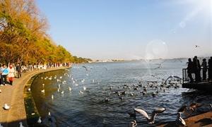 滇池滇池3