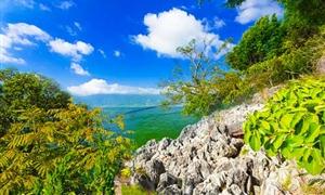 南詔風情島2