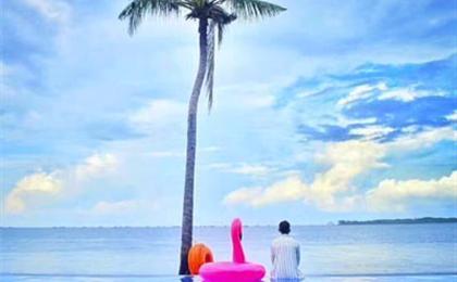 菲律宾宿雾6/7日半自由旅游(我行我宿)与鲸鲨共舞,沙丁鱼风暴,3天自由活动