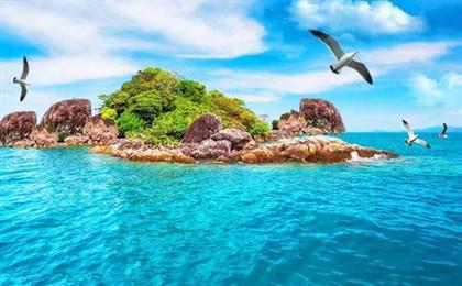 [海豚之旅]澳大利亚海陆空一价全含10日游<墨尔本+凯恩斯+绿岛大堡礁>澳世风情