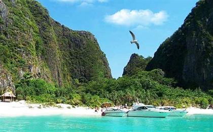 [一价全含]澳大利亚+新西兰海陆空13日深度游雨林天礁&多彩香槟池