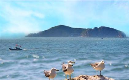 济南、泰山、青岛、威海蓬莱、大连、旅顺双飞单船7日游 亲海山东