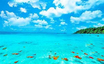 普吉岛-斯米兰-公主岛-海豚岛6日游<5+1自由行+0自费+豪华双体帆船+进3个店>天域A系列