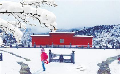 南川金佛山北坡赏雪、古佛洞祈福一日游<含景区门票>金佛山北坡金粉雪世界