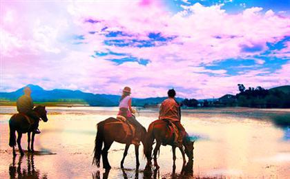 丽江-香格里拉纯玩双飞5日游(拉市海线)<虎跳峡+普达措+小中甸牧场>嗨玩云南