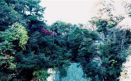张家界森林公园+黄龙洞双座4日游品质张家界