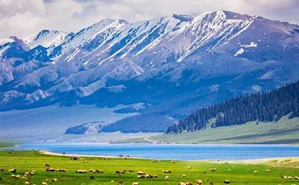 新疆喀纳斯-天山天池-禾木-魔鬼城- 塔克拉玛干-火焰山-葡萄庄园双飞双卧12-14日游全景南北疆
