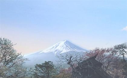 东京+箱根+富士山+京都+大阪踏雪6日游畅游本州