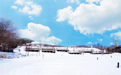 日本東京+箱根+富士山+鐮倉戲雪半自助6日游玩轉東京都5+1
