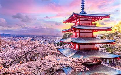 【日本本州】东京-富士山-京都-奈良-大阪早春泡汤6日游全景双都.早春泡汤