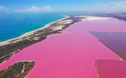 西澳大利亚珀斯-粉红湖-卡尔巴里国家公园-洛特尼斯岛纯玩深度半自由9日游<妻子的浪漫旅行>孤独西澳