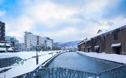 日本东京+北海道轻奢度假滑雪7日游<全程五星+国航直飞>北海道纯白世界