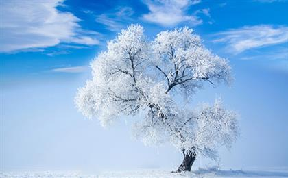 重庆出发东北冰雪环线双飞6日游<吉林雾凇-万科松花湖滑雪-魔界-长白山天池-镜泊湖-雪乡-亚布力-哈尔滨市区>冰雪王者