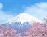 日本东京+富士山+镰仓+箱根双飞6日游