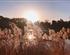 【北京-天津】天安門+圓明園+宛平城+盧溝橋精髓文化雙臥/雙飛6日游(玩轉京津冀)