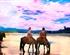 丽江-香格里拉纯玩双飞5日游(拉市海线)<虎跳峡+普达措+小中甸牧场>