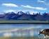 西藏拉萨-林芝-羊湖-纳木错卧进飞回10日游