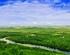 呼伦贝尔草原-莫日格勒河-额尔古纳-满洲里-呼伦湖双卧10日游