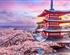【日本本州】京都-奈良-大阪-富士山-东京6日游